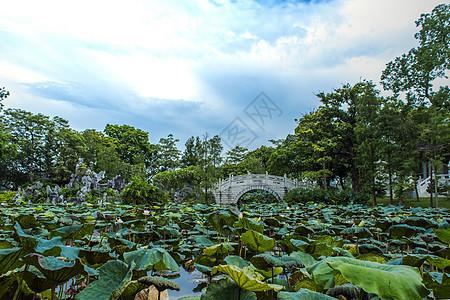 城市中国风古石板桥自然风光背景图片