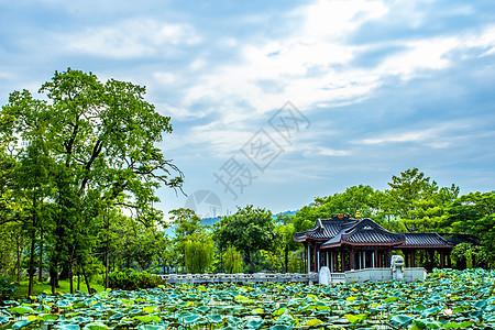 城市荷塘边中国风古建筑背景图片