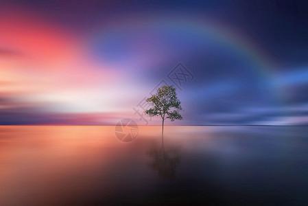 风雨后的彩虹图片
