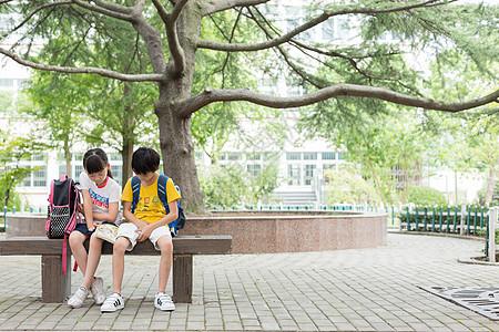 在树下坐着一起看书的小学生图片