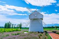 草原风车图片