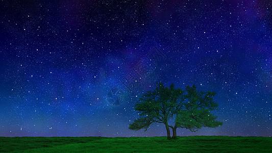 星空下的树图片