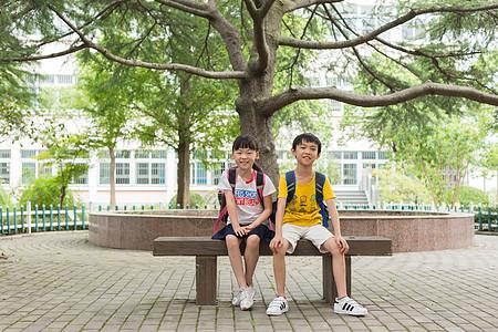 坐在大树下背着书包的小学生图片