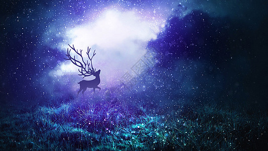森林迷雾与麋鹿图片