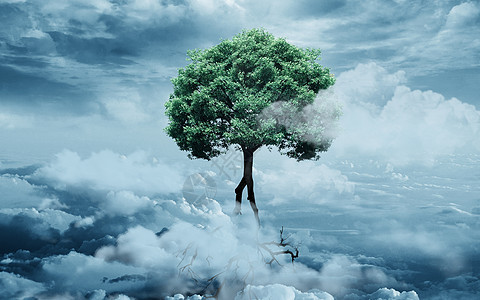 云端巨树图片