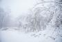 雾凇雪景素材图片