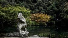 九溪烟树图片