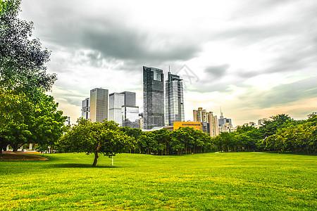 简约城市建筑绿化单色调背景图图片