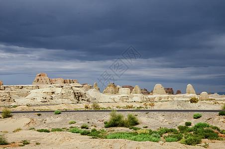 新疆克拉玛依魔鬼城沙漠植物图片