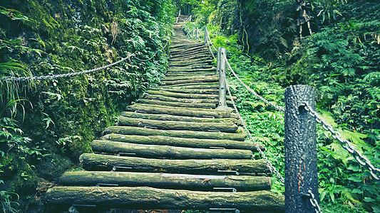 山中木梯图片
