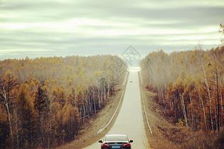 深秋大兴安岭的公路图片