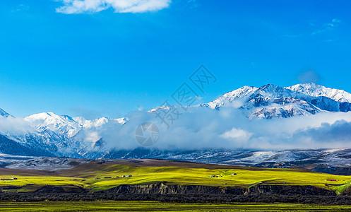 雪山云雾草地图片