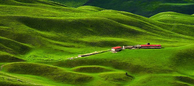 起伏的草原中人家图片