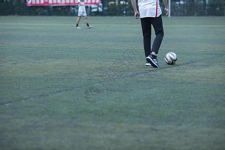 足球场绿茵草坪图片