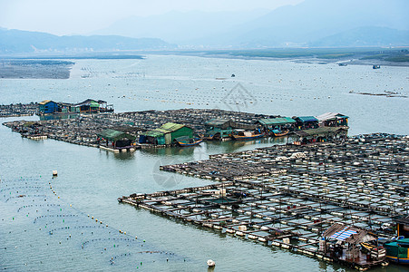 霞浦养殖基地图片