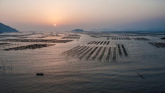 霞浦北岐海带养殖基地日出图片