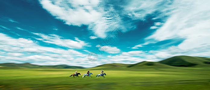 草原驰马图片