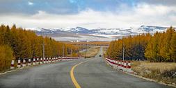 内蒙秋色雪山下的公路图片