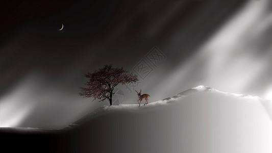 山坡上的小动物图片
