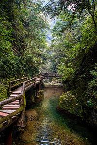 四川 青城山图片
