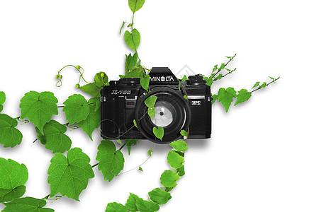 被藤曼缠绕的相机图片