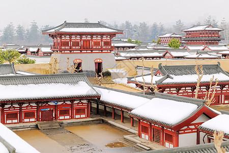 大明宫雪图片