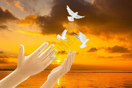 放飞和平与希望图片