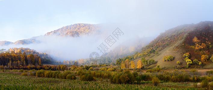 晨雾弥漫的乌兰布统山峰树林图片