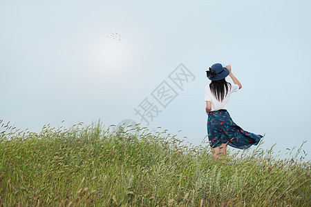 站在草地上的美女背影图片