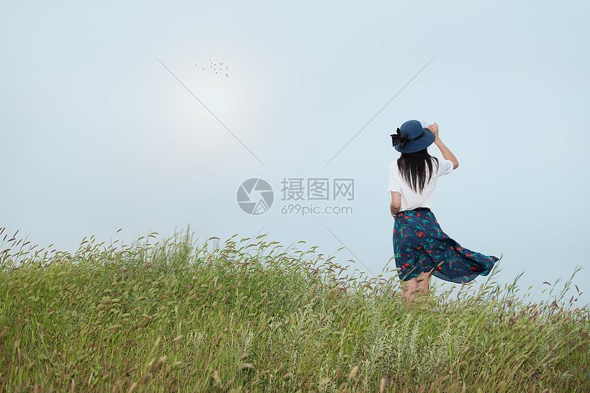 qq空间 新浪微博  花瓣 举报 标签: 美女背影蓝裙子长发女子背影美女