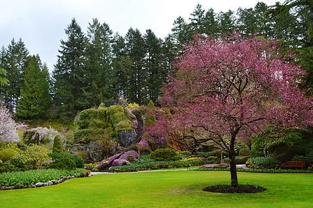 加拿大布查德花园图片