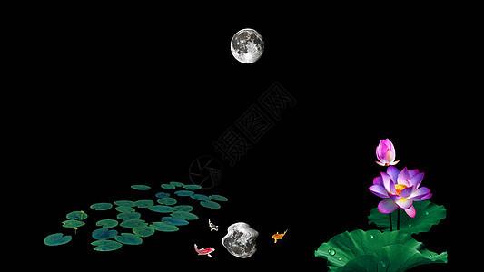 荷花池中的月亮倒影图片