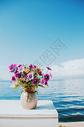 洱海景观图片