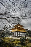 京都金阁寺图片