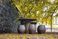 银杏树下的石凳图片