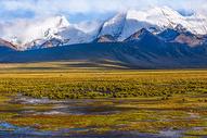 雪山下的湿地图片