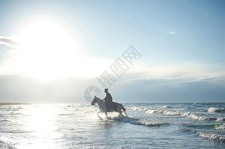 青海湖里骑马的男孩图片