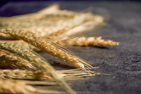 小麦背景素材图片