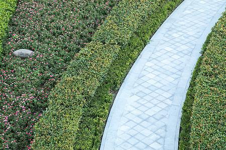 空无一人的城市公园小道图片