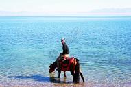 新疆赛里木湖骑马少年图片
