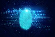 指纹扫描识别系统图片