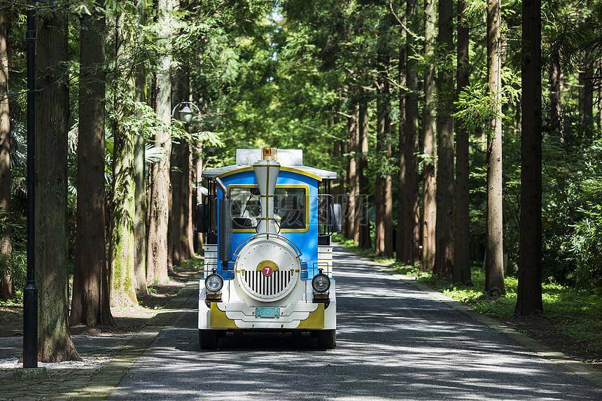 森林里的小火车图片