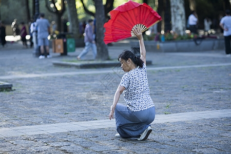 中国元素舞扇图片