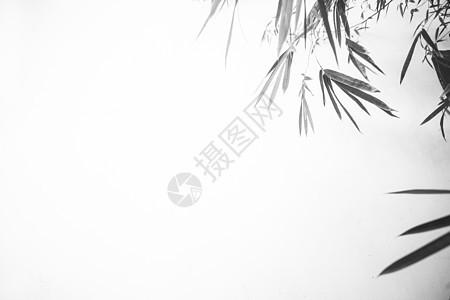 极简中国风竹子水墨素材图片