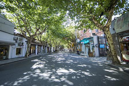 上海小资法式林荫小道图片