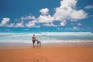 印度洋边老人与狗图片