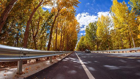 秋天的公路图片