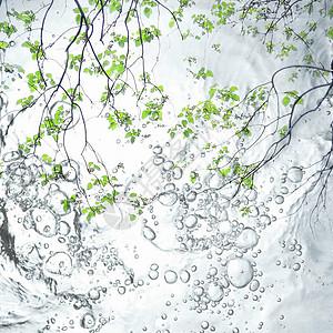 【10.1】水中花图片