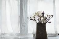 窗台上幽静的小花图片