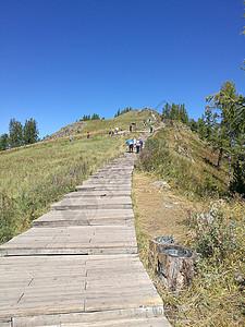 喀纳斯湖观鱼台的阶梯图片